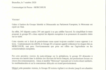 Mercosur groupe ID